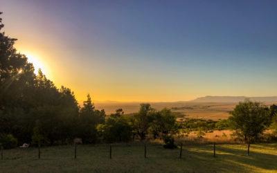 Afrique du sud 23.12.2019
