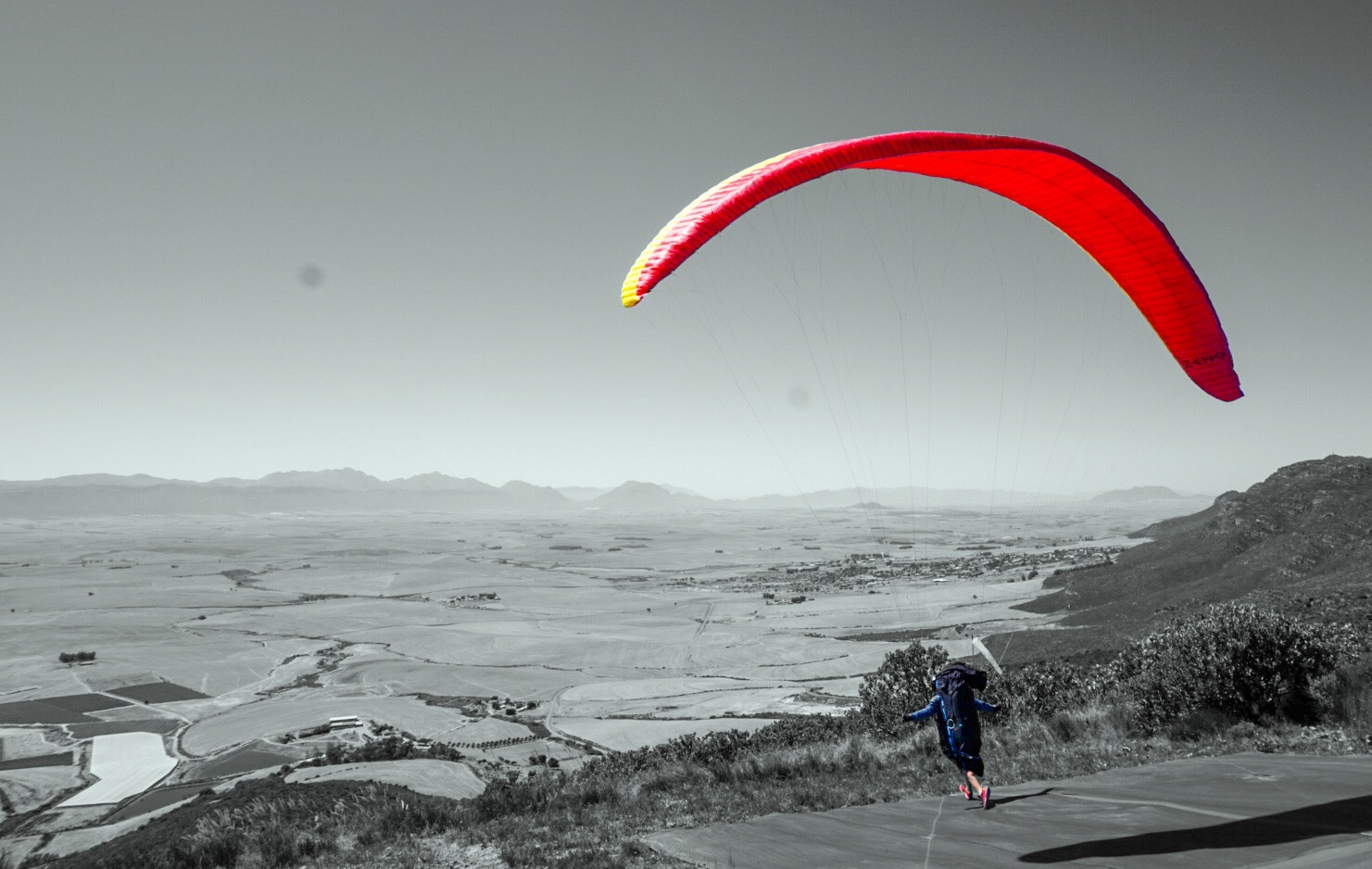 alpsfreeride paragliding black white red colors