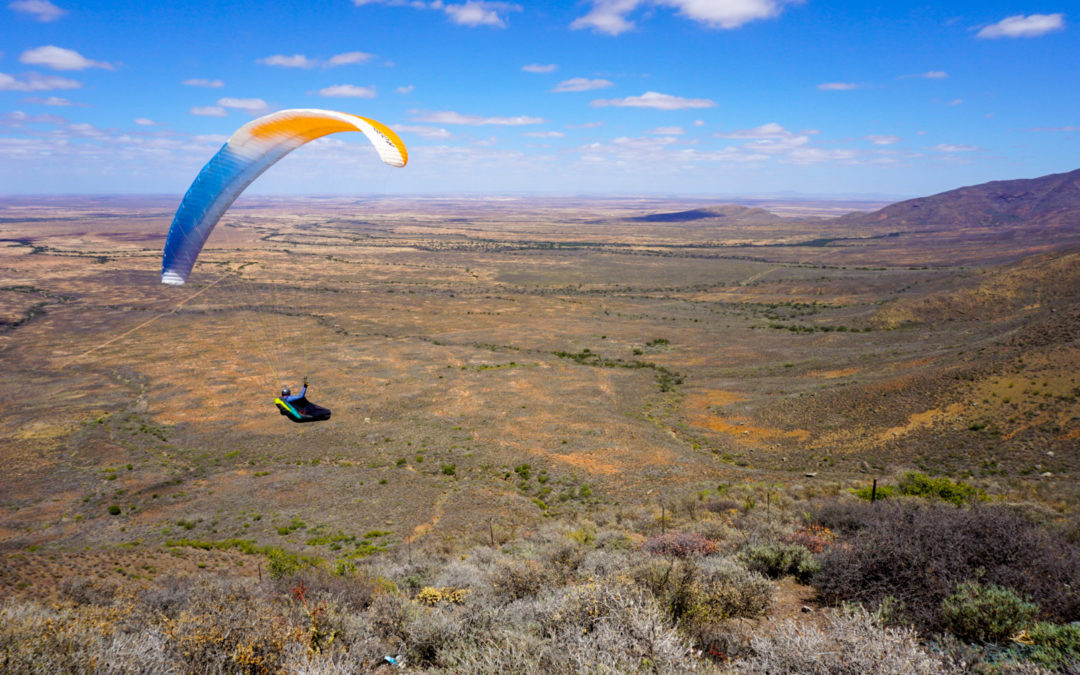 Afrique du Sud 2019 – Epilogue