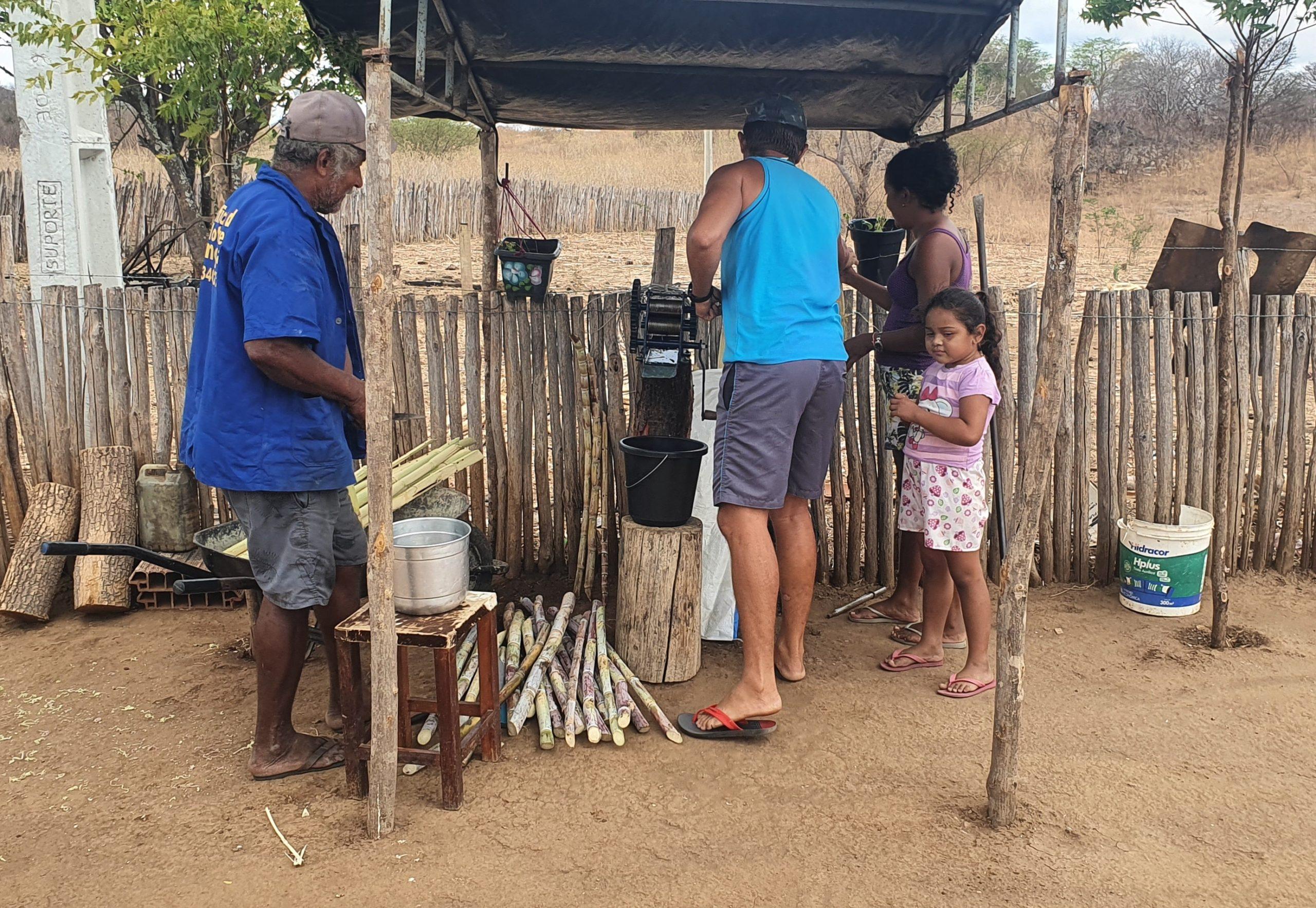 Fabrication de jus de canne à sucre.